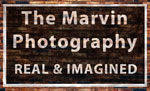 The Marvin Photography